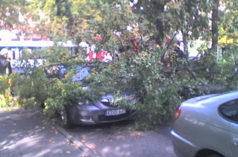 Klaipėdoje medis užvirto ant automobilio.