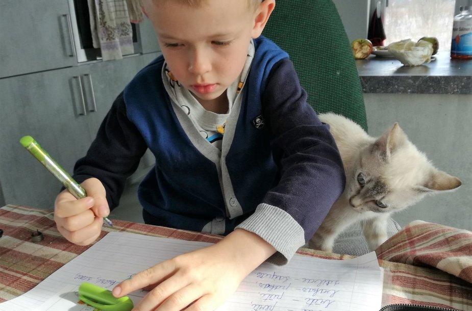 Katytė Ričė ir Radvilas