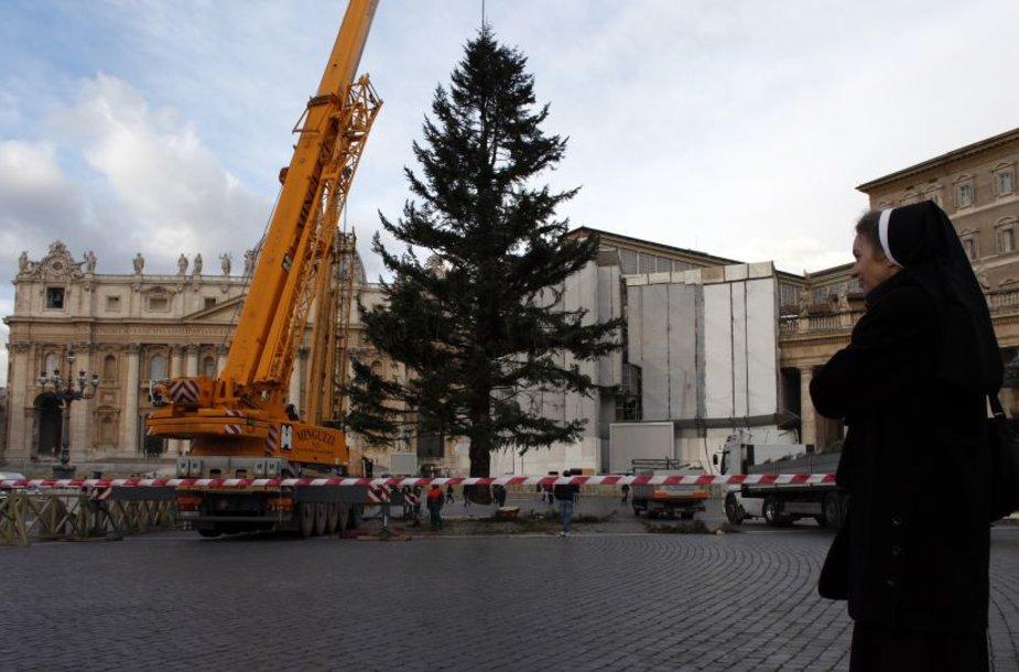 Vatikane įkurdinta Šv. Kalėdų eglė.