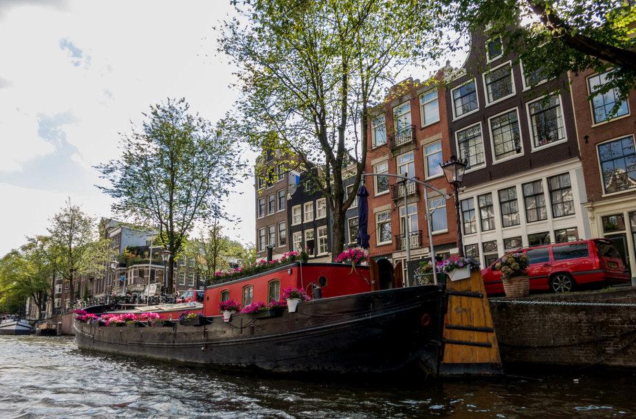 Amsterdame