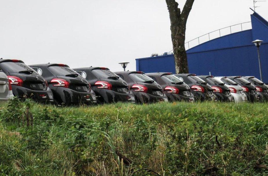 """Eilė naujų """"Peugeot"""" automobilių"""