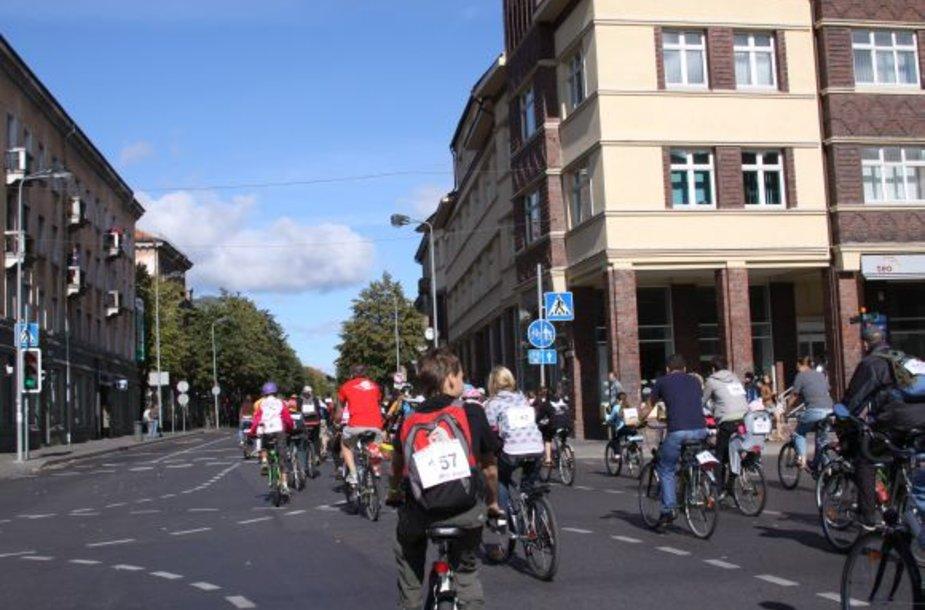 Dviratininkų bendrijos atstovas D.Mileška teigia, jog palikus esamą sistemą, dviratininkai važinės taip, kaip patogu jiems. Juos tenkintų tik sprendimas atskirti eismo juostas Herkaus Manto gatve.
