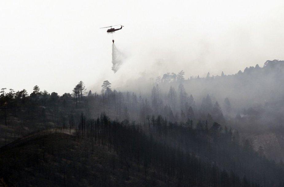 Miškų gaisras