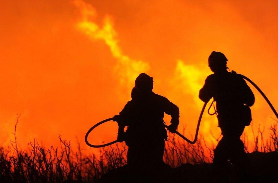 Gaisrininkai bando pažaboti ugnį.
