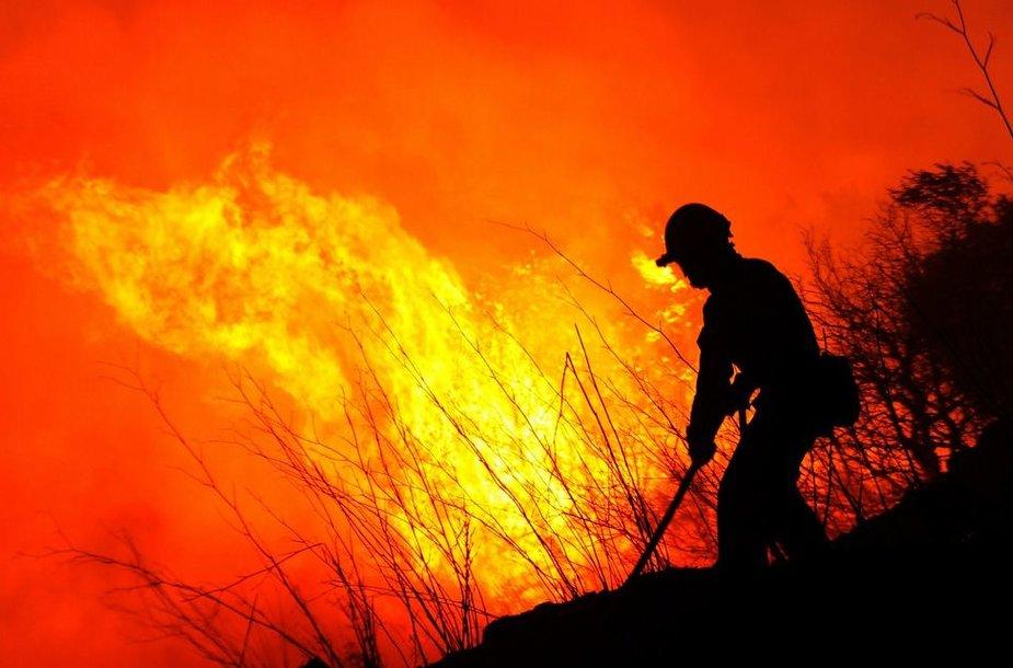 Gaisrininkas kovoja su ugnimi.