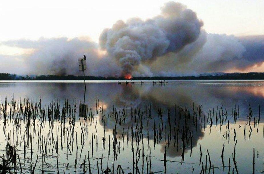 Australijoje nuo karščio lengvai įsiplieskia gaisrai.