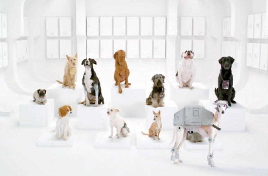 """""""Volkswagen"""" reklamos """"The Bark Side"""" akimirka"""