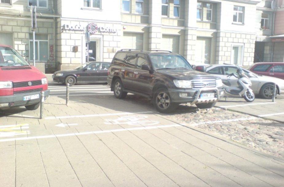 Asta Baukutė automobilį pasistatė neleistinai