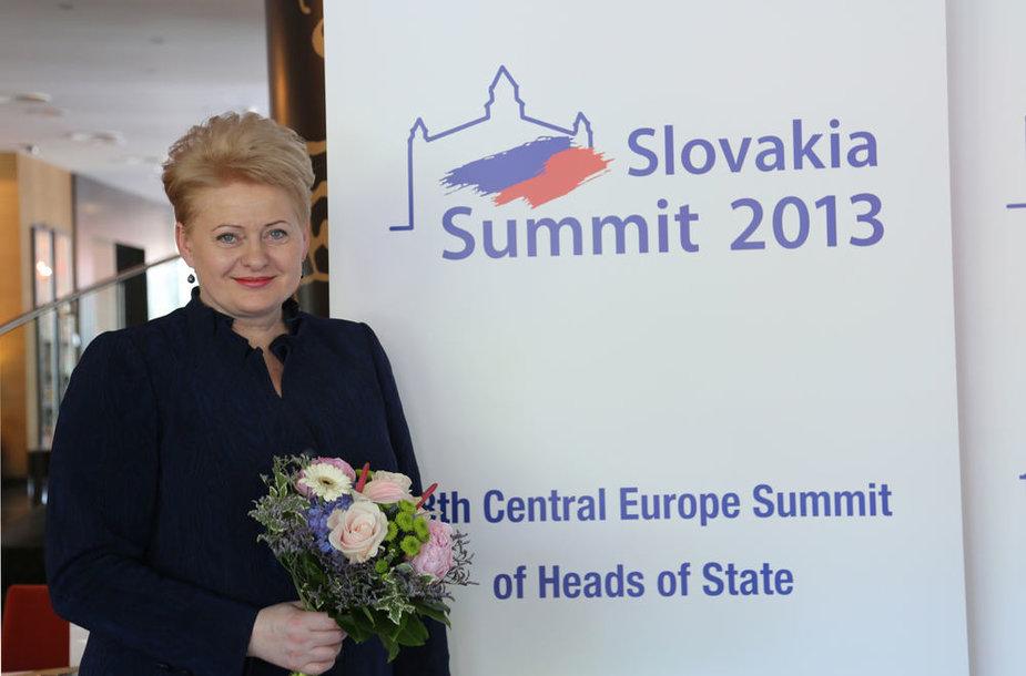 Dalia Grybauskaitė Vidurio Europos šalių vadovų susitikime Slovakijoje.