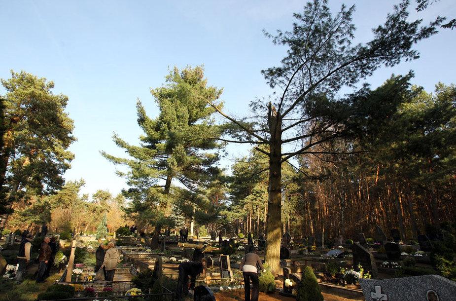 Žemųjų Kaniūkų kapinės
