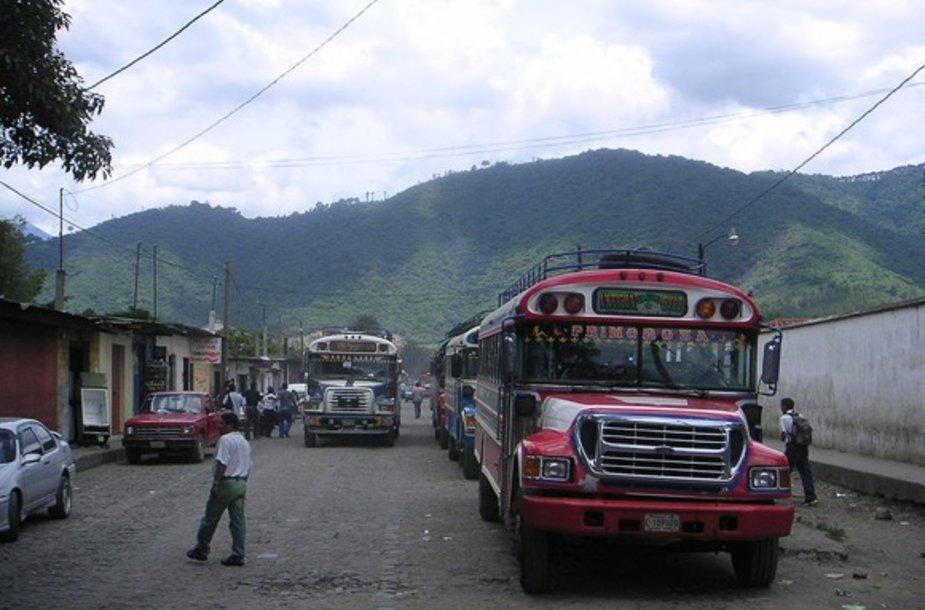 Viščiukų autobusas Gvatemaloje