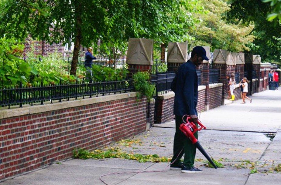 Gatvės pilnos prikritusių lapų