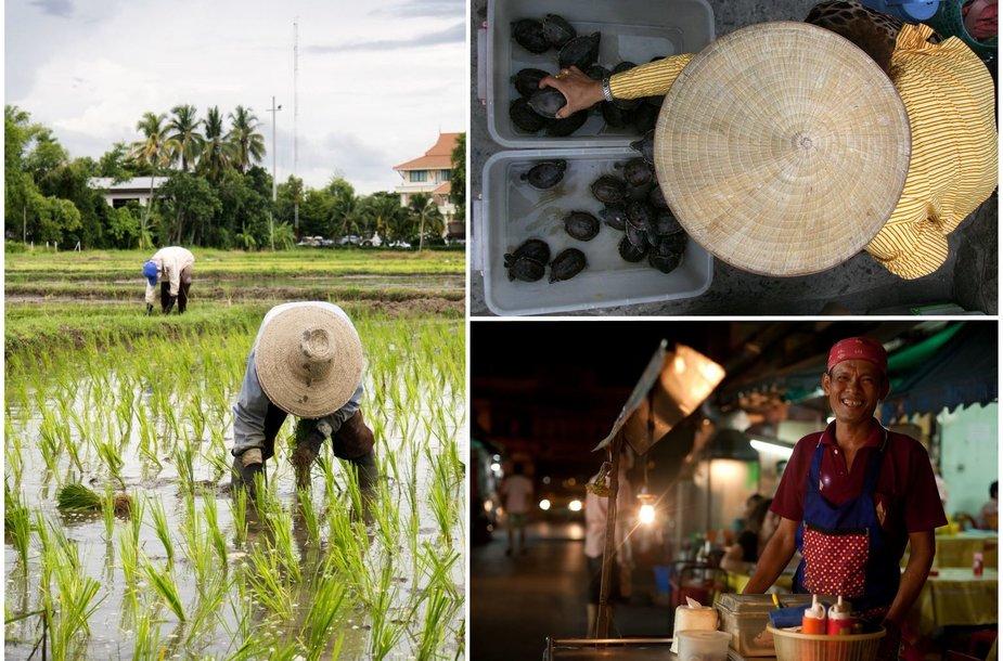 Maisto kultūra Tailande ir Vietname