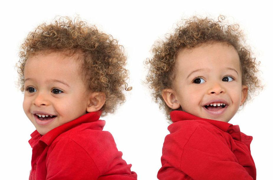 Иллюстративное фото - близнецы