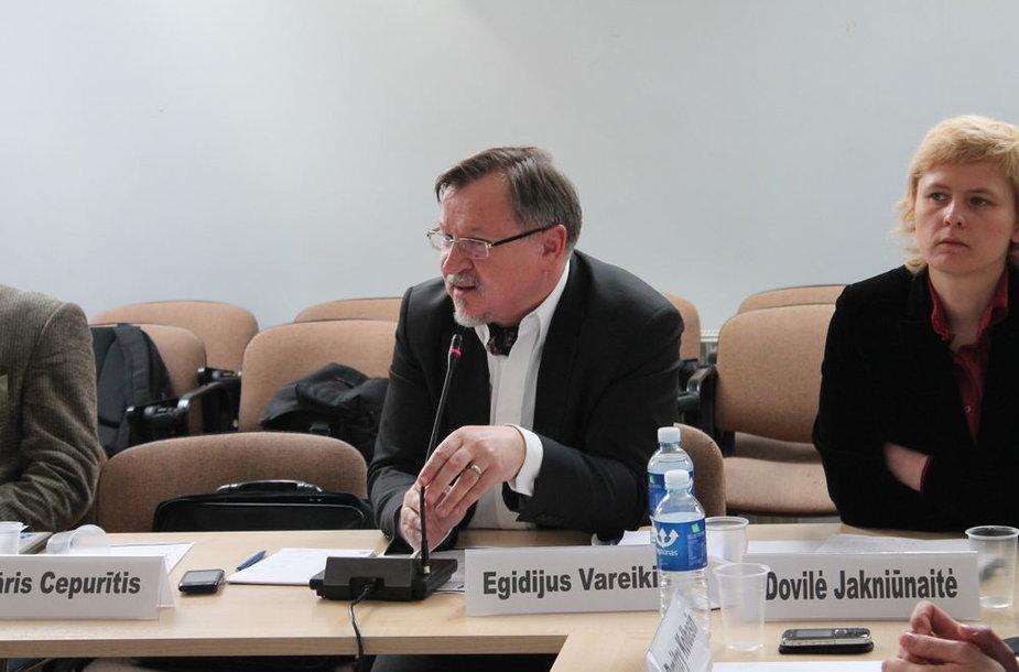 Конференция российской оппозиции «Отдельно от Европы? Рубеж демократии в России: взгляд изнутри и взгляд соседей» в Вильнюсе