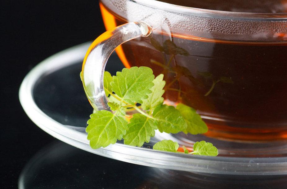 Raudonoji arbata