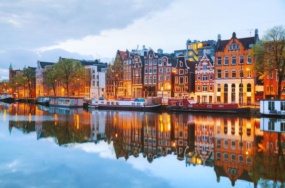 6. Nyderlandai