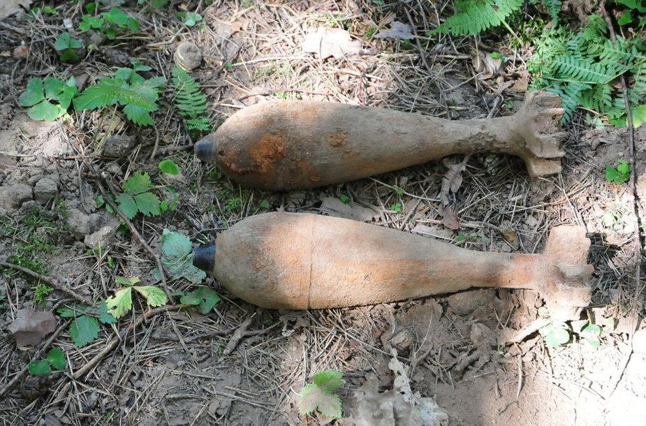 Vilniuje, Skersinės gatvėje, miške, rasti sprogmenys