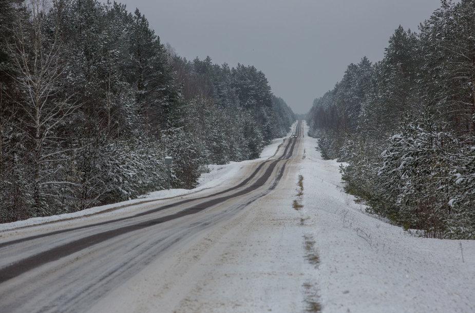 Dzūkijos  kaimuose ir miškuose - tylus žiemos metas