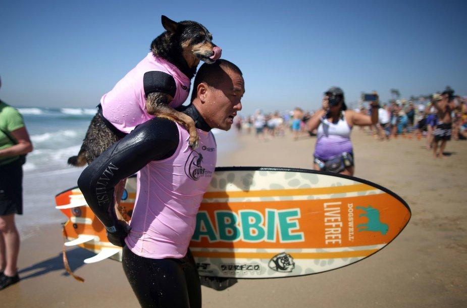 Šunų banglentininkų konkursas Kalifornijoje