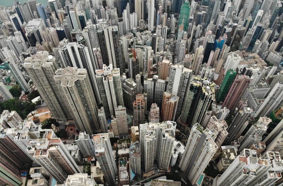 Honkongo dangoraižių miškas