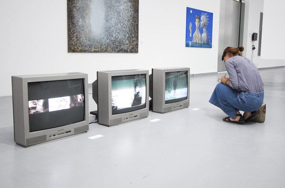 """Vilniaus tapybos trienalės """"Tapybos kontekstai"""" atidarymas"""