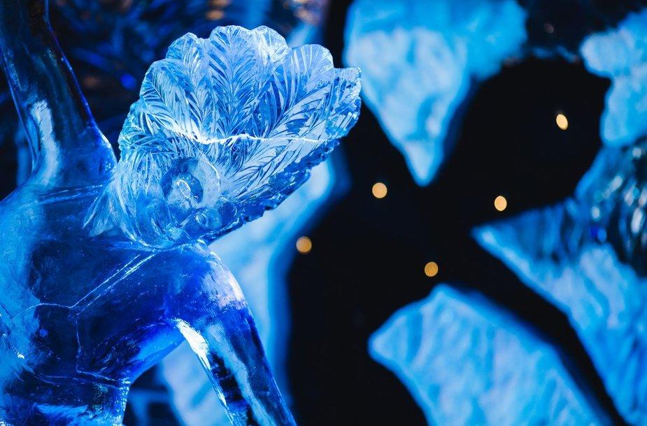 Ledo skulptūros Jelgavoje