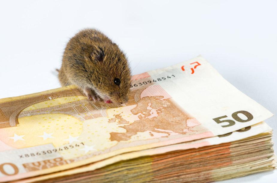 Pelė graužia pinigus