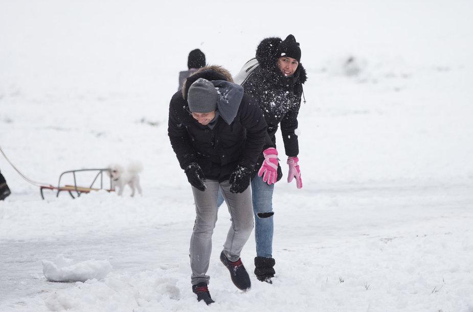 Žiemiškas sekmadienis Vingio parke