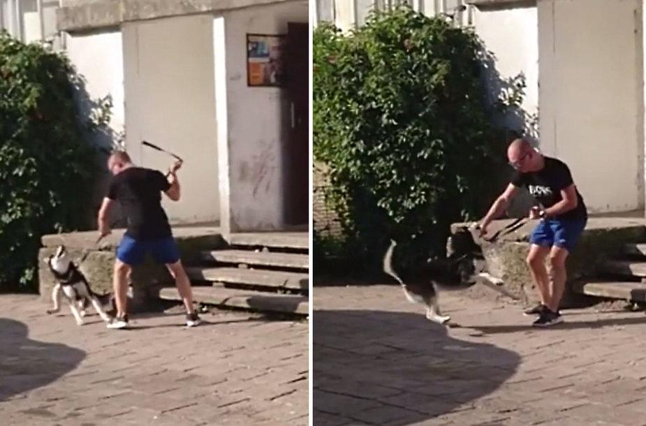 Prieš šunį smurtaujantis vyras