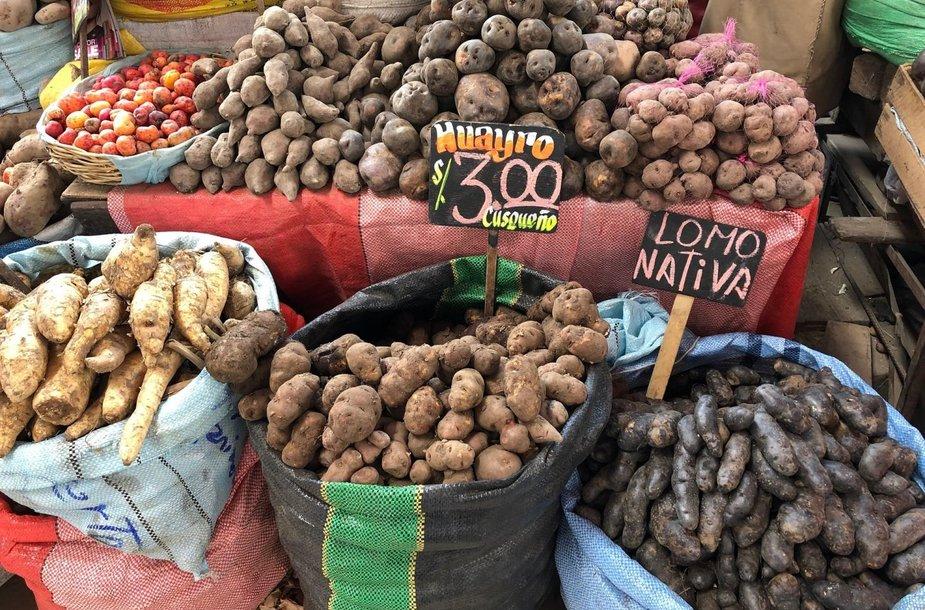 Maistas Peru