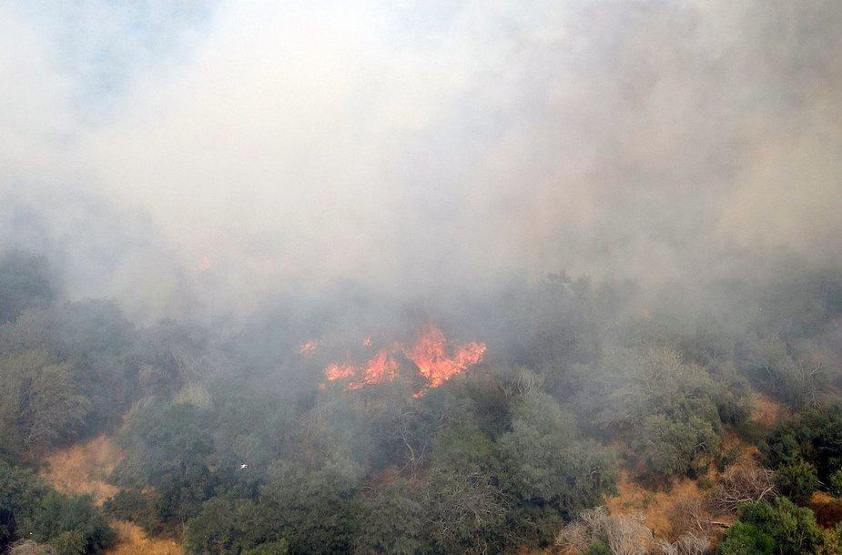 Izraelio ir Gazos Ruožo pasienyje kilo apie 20 gaisrų