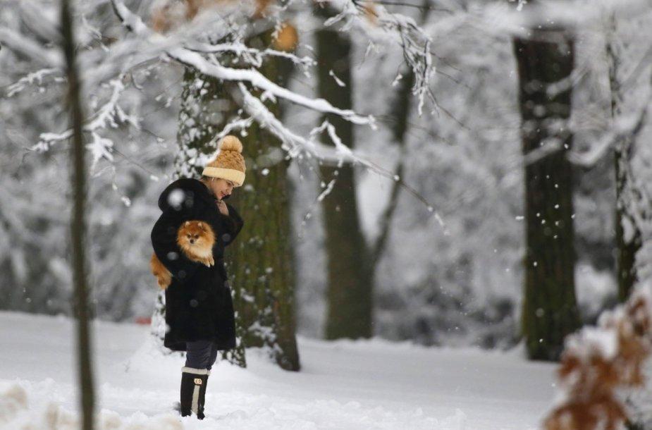 Žiema Minske