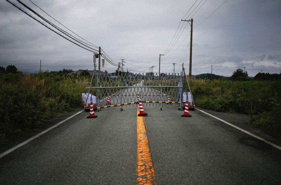 Fukušimos atominės jėgainės apylinkės