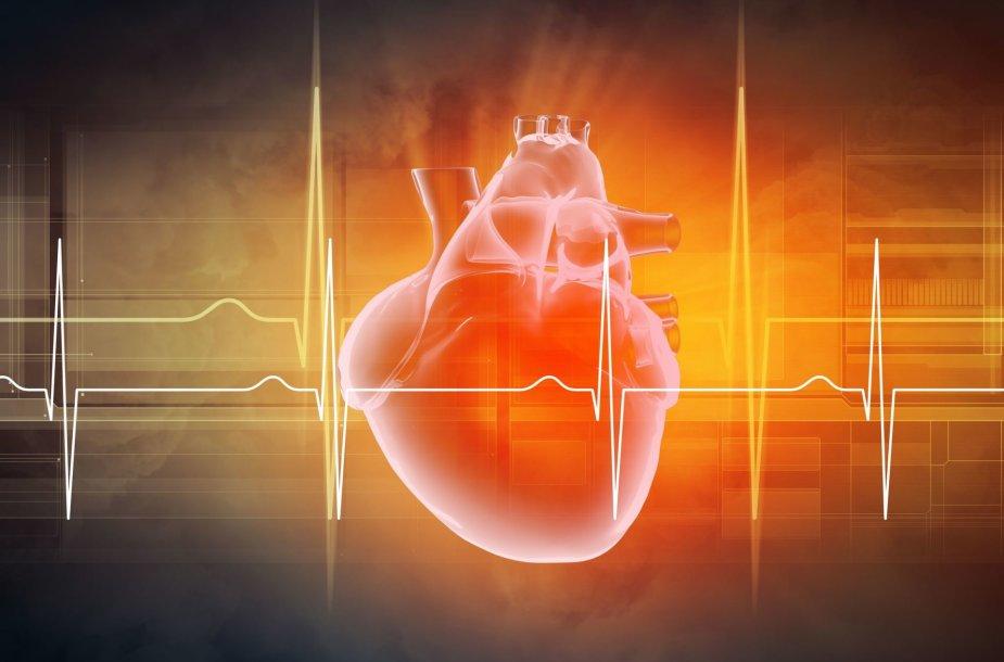 Širdis / 123rf nuotr.