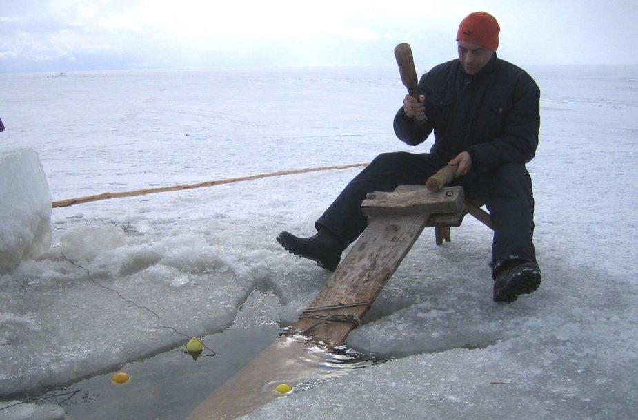Poledinė bumbinamoji žvejyba