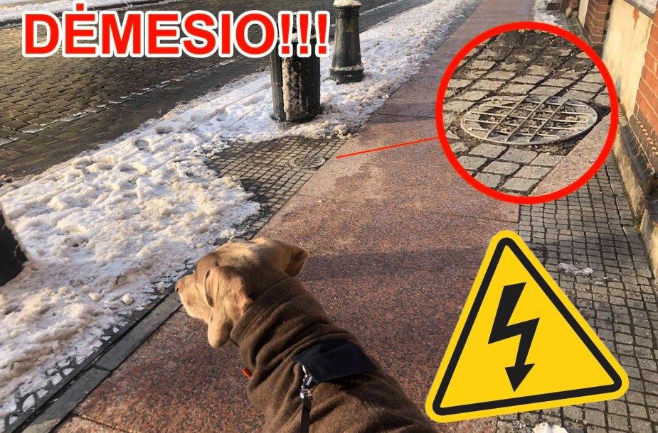 Klaipėdietis miesto valdžiai pranešė apie neįprastą atvejį - išmontavus šviestuvą šioje uostamiesčio vietoje tekėjo elektra, papurčiusi ne vieną šunelį.
