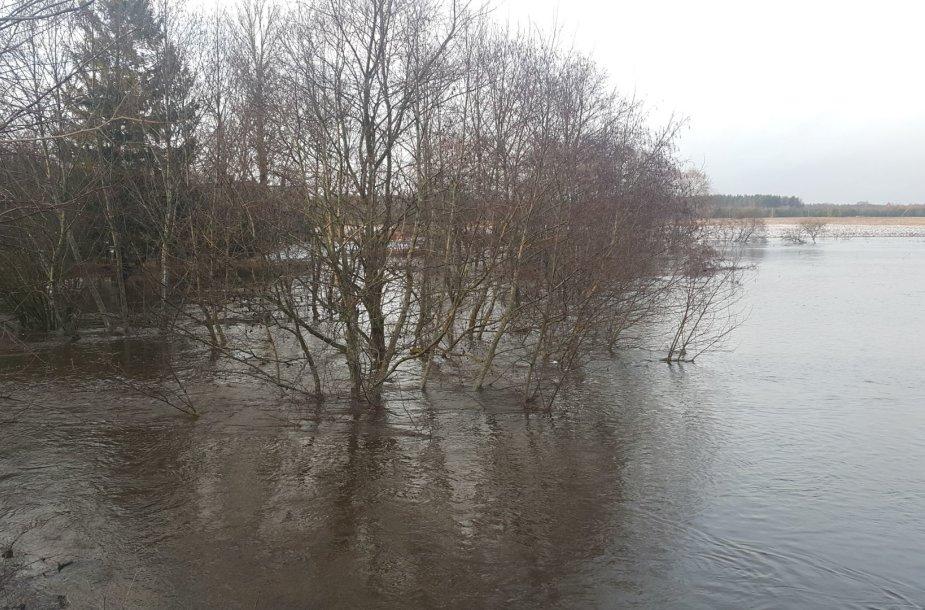 Pamaryje iš krantų išsiliejusios upės