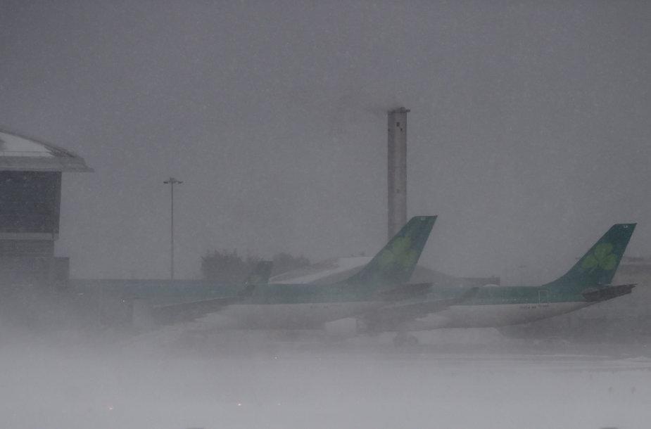 Pūga prie Dublino oro uosto