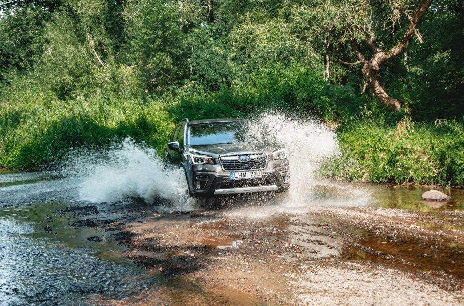 """Hibridinio """"Subaru Forester"""" testas"""