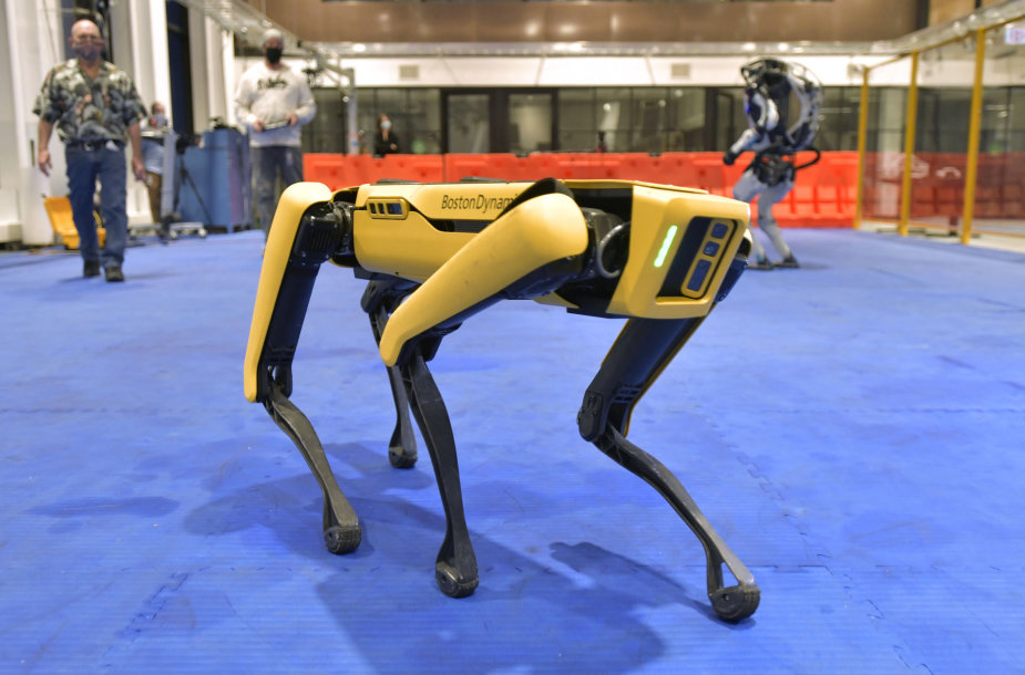 Šuo robotas