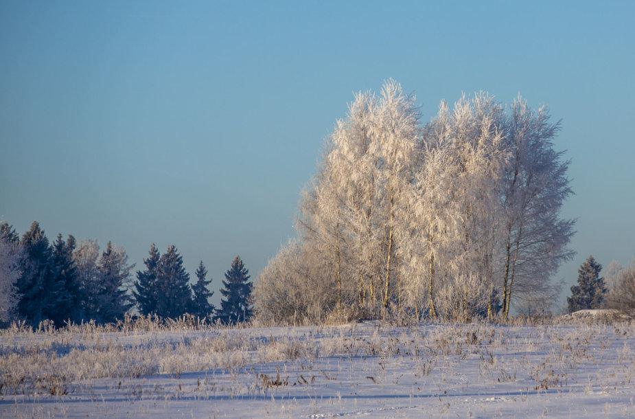 Į Lietuvą atsirito nauja šalčio banga