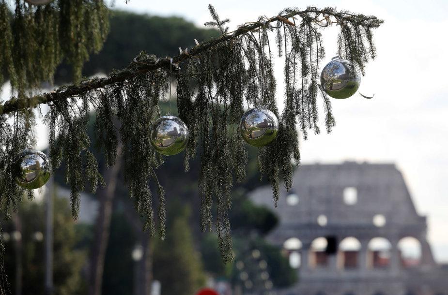 Kalėdinė eglė Romoje