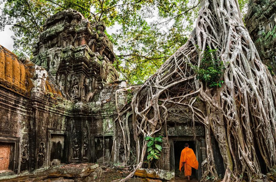 Kambodža, Ankoras