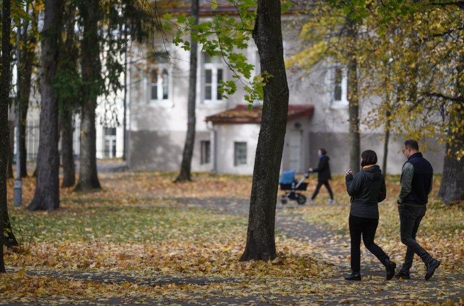 Sapiegų rūmų parkas