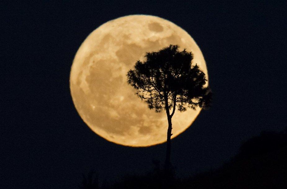 """Dangaus stebėtojai grožisi """"supermėnuliu"""""""