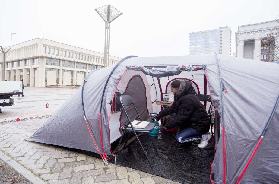 Yolana Slušnys pasiryžusi gyventi prie Seimo