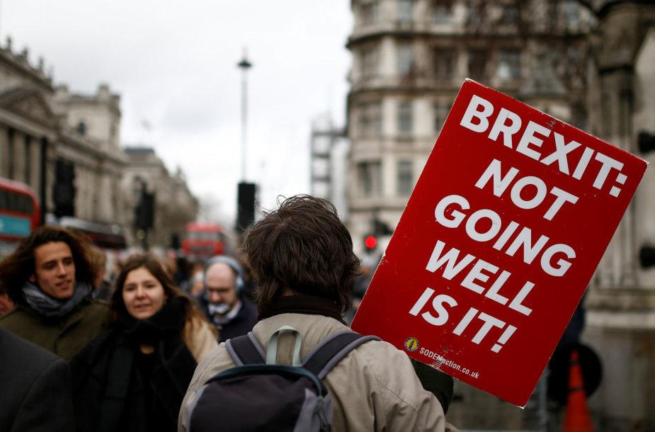 """""""Brexit"""" proceso pabaigos greičiausiai teks palaukti"""