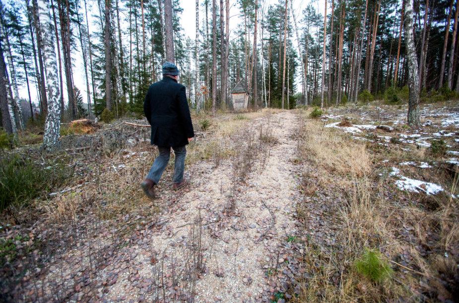 Žvyruotas pėsčiųjų takas