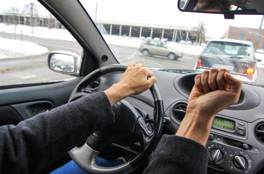 Pyktis prie vairo